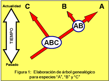 Blog 150330 - Árbol genealógico - Fig. 1