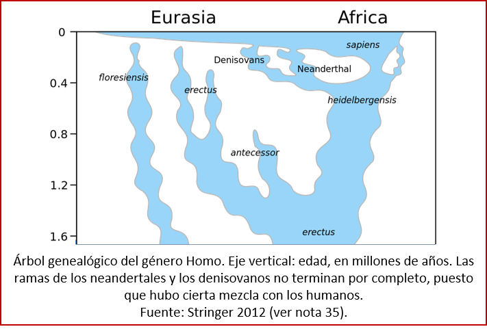 Blog 1603XX - Árbol genealógico de Homo