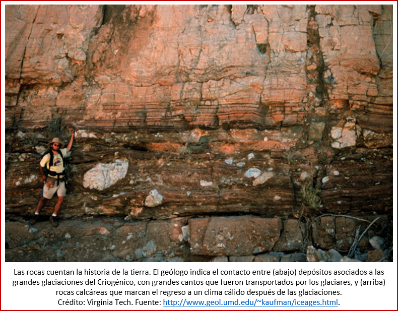 Blog 1906XX - Animales - diamictite-carbonate contact