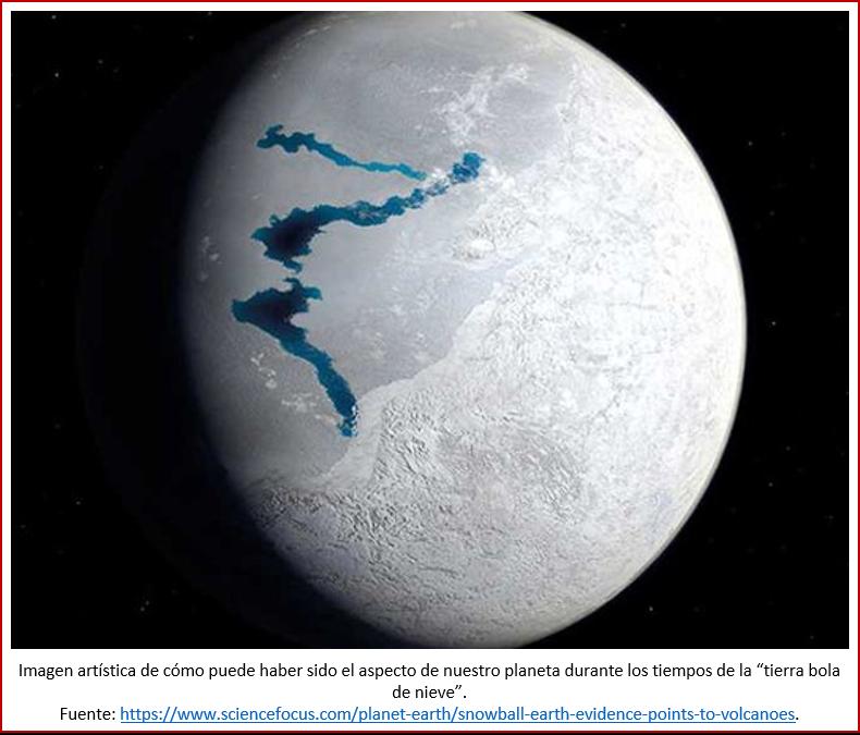 Blog 1906XX - Animales - Tierra bola de nieve