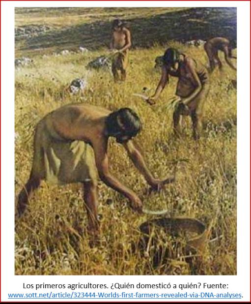 Blog 200430 - Revolución neolítica 6 - quien domesticó